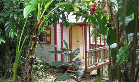 Eco Lodge Saba
