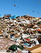 landfill-2384234346