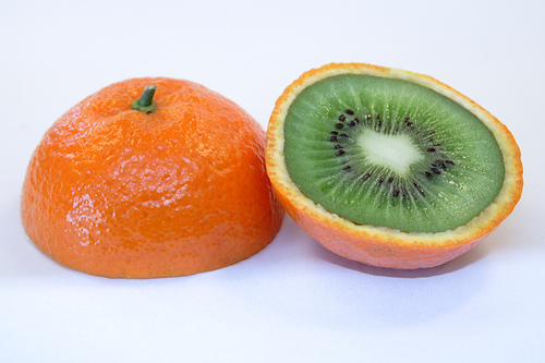 A Genetically Modified Food