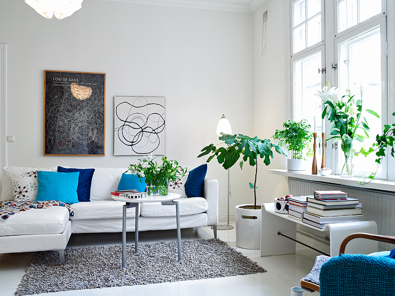 Living-room-plant-ideas.