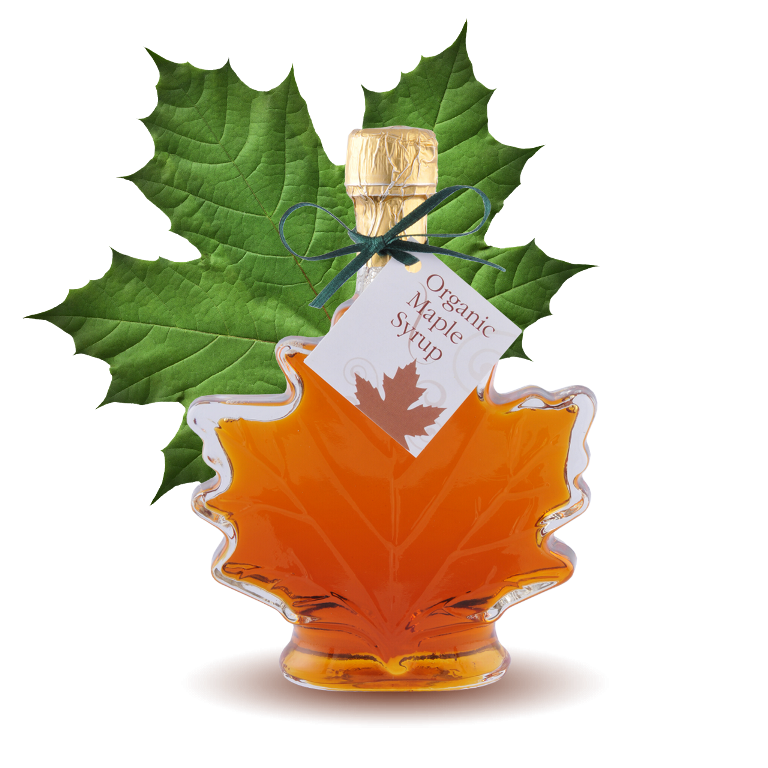 organic-maple-leaf-large-big__26346.1277691353.1280.1280