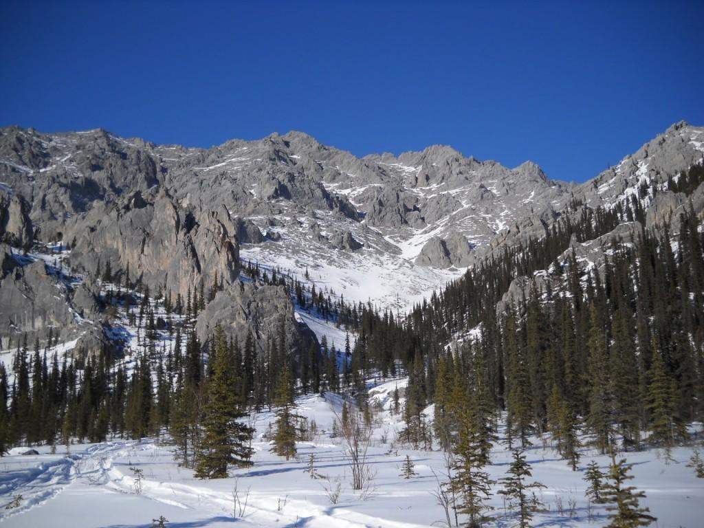 White Mountains 100 091
